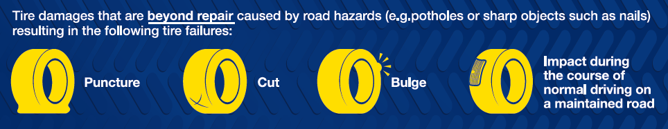 WHAT ARE ROAD HAZARD DAMAGE